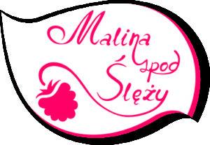 logo - Malina Spod Slezy